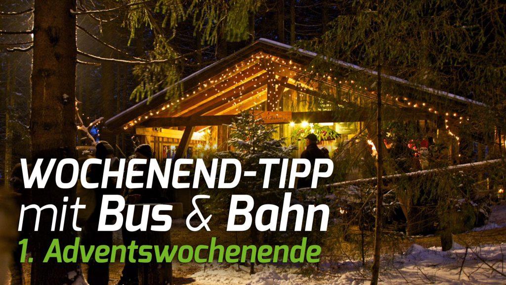 Wochenend-Tipp mit Bus & Bahn zu den regionalen Christkindlmärkten 1. Adventswochenende. Foto: © Waldweihnacht Schweinhütt.