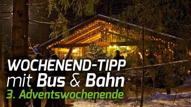 Wochenend-Tipp mit Bus & Bahn 3. Adventswochenende. Foto: © Waldweihnacht Schweinhütt.